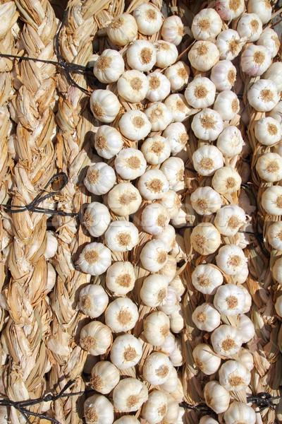 garlic bundles strings food texture background Stock photo © lunamarina