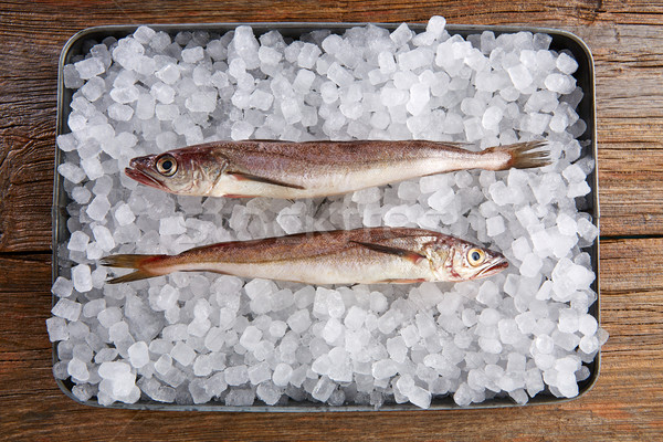 Hake fish on ice side view Stock photo © lunamarina