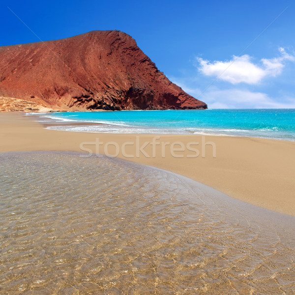 Praia la tenerife turquesa canárias vermelho Foto stock © lunamarina