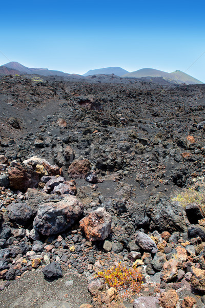 La Palma volcanic lava black stones Stock photo © lunamarina