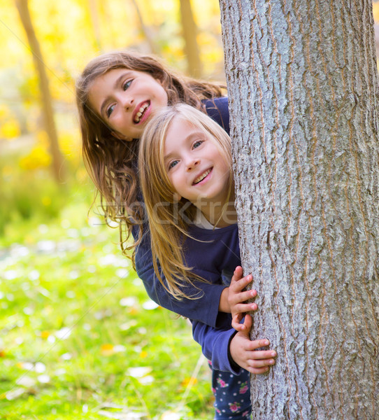 Autumn sister kid girls playing in forest trunk outdoor Stock photo © lunamarina