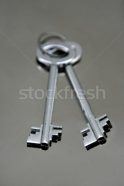 Srebrny pary klucze lustra ze stali nierdzewnej real Zdjęcia stock © lunamarina