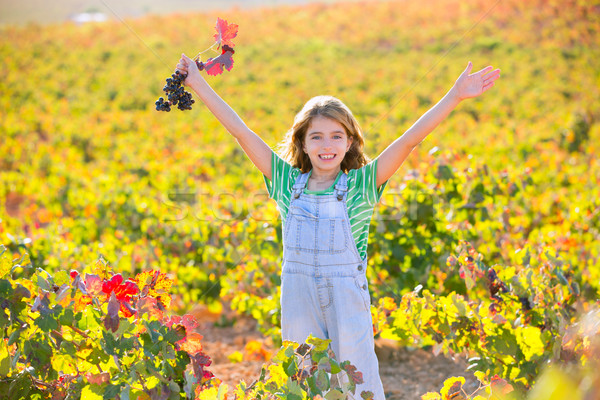 Stock photo: Kid girl in happy autumn vineyard field open arms red grapes bun