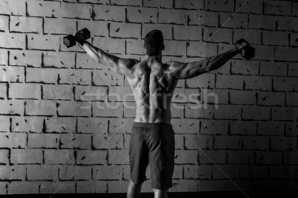 Tornaterem férfi emelkedő súlyzók súlyemelés hátsó Stock fotó © lunamarina