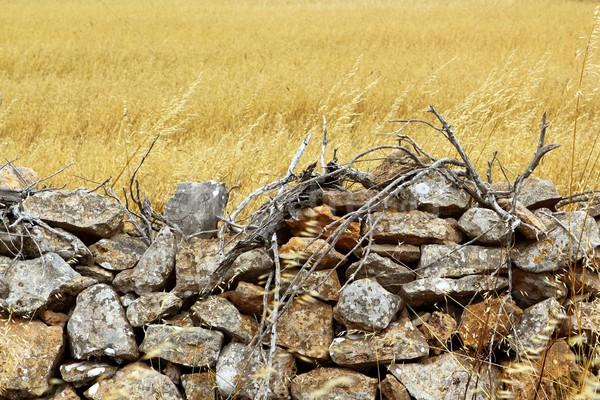 Maçonnerie mur de pierre or été domaine bâtiment Photo stock © lunamarina
