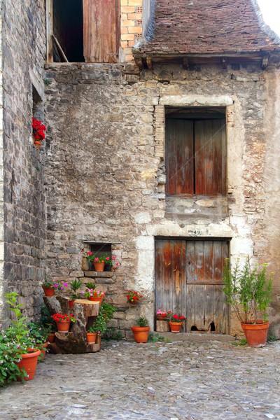 Hecho valley village Pyrenees houses Stock photo © lunamarina