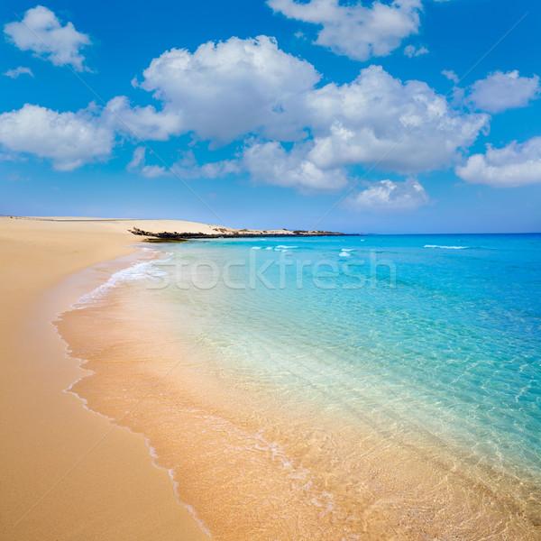 Praia canárias Espanha água paisagem mar Foto stock © lunamarina