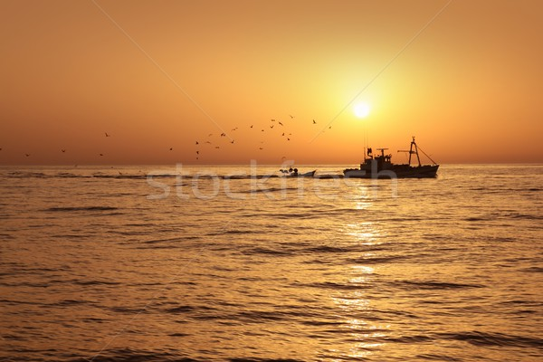Fisherboat professional sardine catch fishery sunrise Stock photo © lunamarina