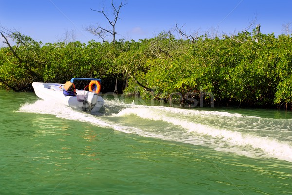 Boating in mangroves in Mayan Riviera Mexico Stock photo © lunamarina