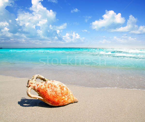 Romana cultura mediterraneo spiaggia turchese Spagna Foto d'archivio © lunamarina