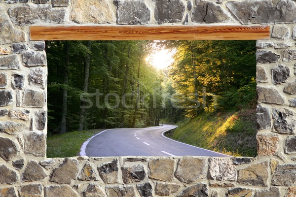 Pedra alvenaria parede janela estrada floresta Foto stock © lunamarina