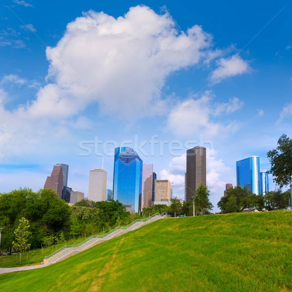 Skyline parco Texas cielo strada alberi Foto d'archivio © lunamarina