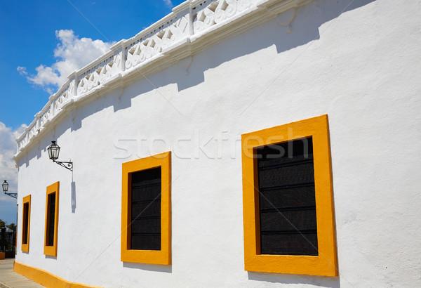 Igazi város homok fehér állat történelem Stock fotó © lunamarina