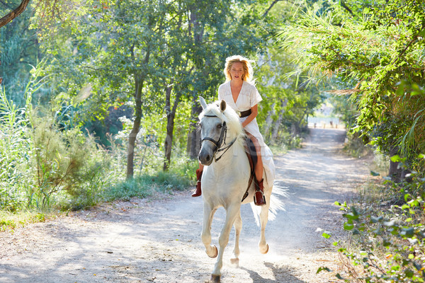 Loiro menina mulher equitação cavalo branco seguir Foto stock © lunamarina