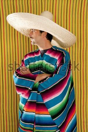 Mexican lazy sombrero hat man poncho nap garden Stock photo © lunamarina