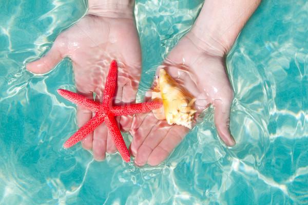 Stockfoto: Handen · zeester · tropische · water