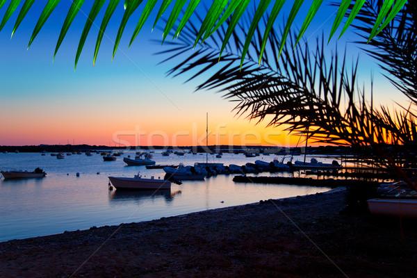 Formentera sunset in se estany des peix Stock photo © lunamarina