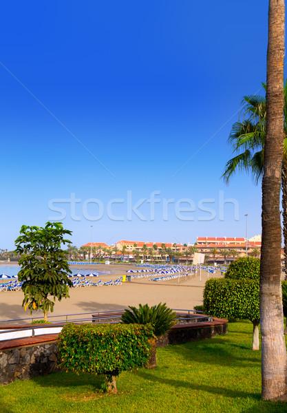 Los Cristianos beach in Arona Tenerife south Stock photo © lunamarina