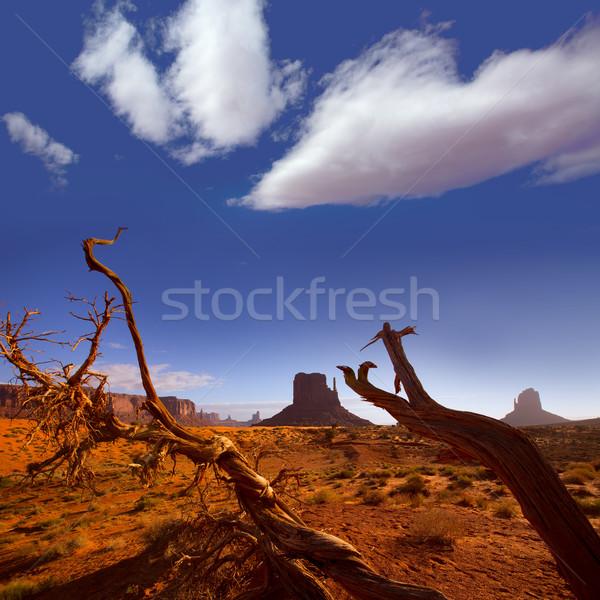Monument West Mitten Butte in morning Utah Stock photo © lunamarina