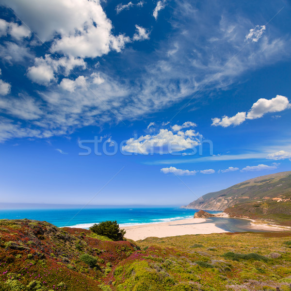 California beach in Big Sur in Monterey Pacific Highway 1 Stock photo © lunamarina