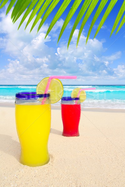 Plage tropicales cocktails palmier turquoise Caraïbes Photo stock © lunamarina