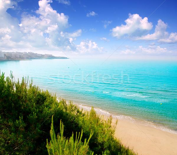 Stok fotoğraf: Long · beach · İspanya · su · şehir · deniz · ağaçlar