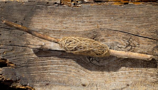 伝統的な スレッド スプール ツリー スティック 支店 ストックフォト © lunamarina