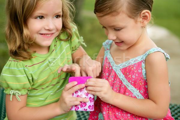 Kettő kicsi iker nővérek játszik rózsaszín Stock fotó © lunamarina