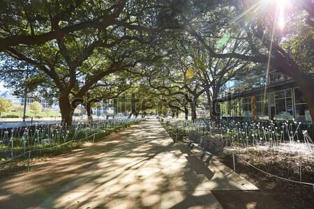 Houston descoberta verde parque centro da cidade Texas Foto stock © lunamarina