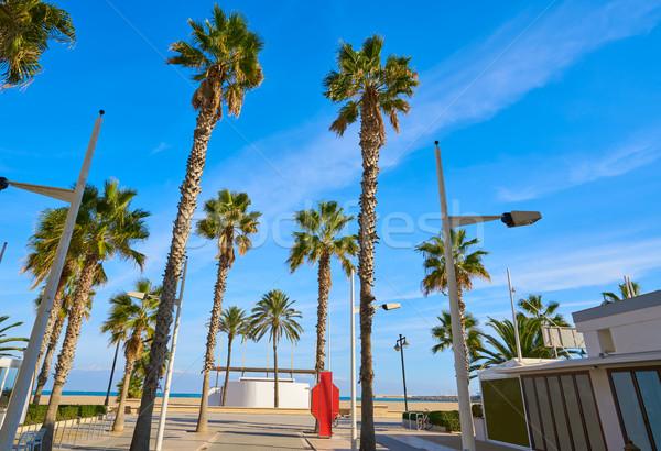 Valencia LA tengerpart Spanyolország pálmafák víz Stock fotó © lunamarina