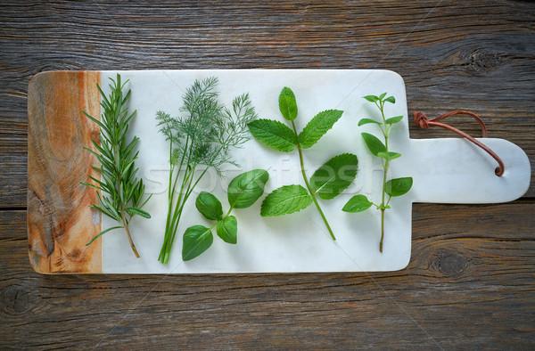 Aromatic herbs culinary plants rosemary fennel Stock photo © lunamarina