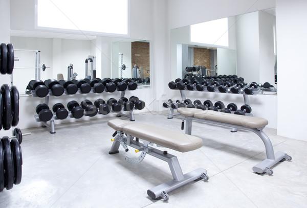 Fitness club weight training equipment gym Stock photo © lunamarina