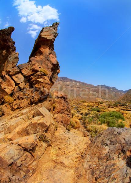 Canárias tenerife parque montanhas céu natureza Foto stock © lunamarina