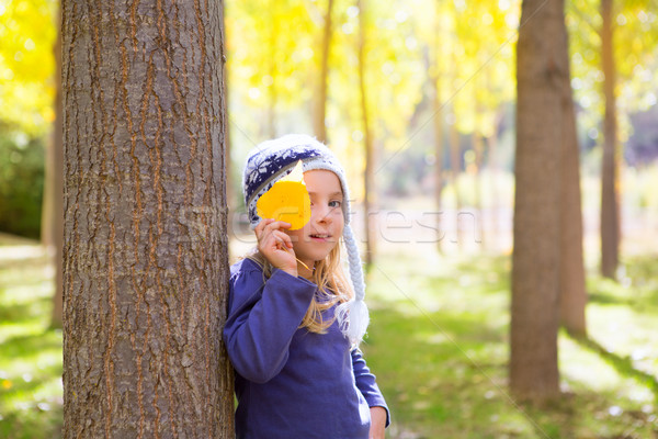 Dziecko dziewczyna jesienią topola lasu żółty Zdjęcia stock © lunamarina