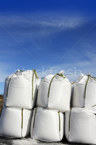 salt white sacks rows stacked to road ice Stock photo © lunamarina