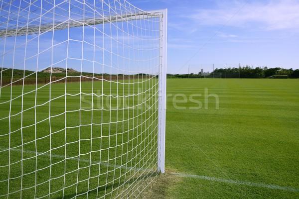Net futbol gol futbol yeşil ot alan Stok fotoğraf © lunamarina