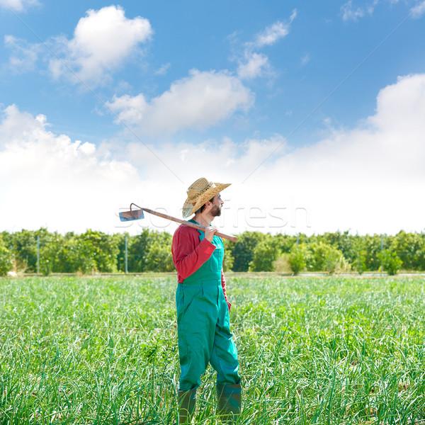 Landbouwer man schoffel naar veld boomgaard Stockfoto © lunamarina