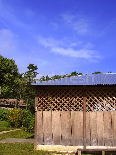 wooden hut in Mexican jungle chiapas Stock photo © lunamarina