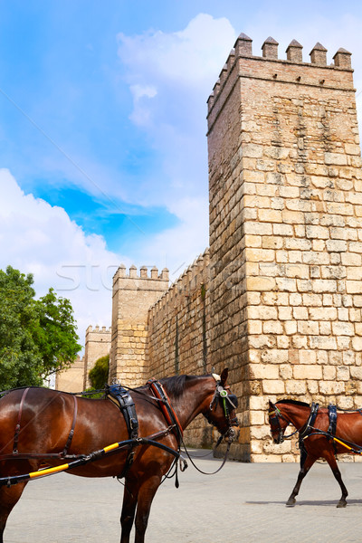 Seville Real Alcazar fortress Sevilla Andalusia Stock photo © lunamarina