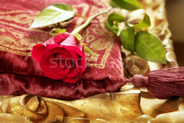 Klassiek Rood rose borduurwerk vintage fluwelen kussen Stockfoto © lunamarina