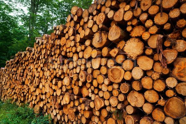 Góry Niemcy drewna lasu Zdjęcia stock © lunamarina