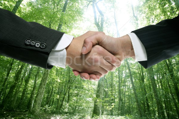 Ecological handshake businessman in a forest Stock photo © lunamarina
