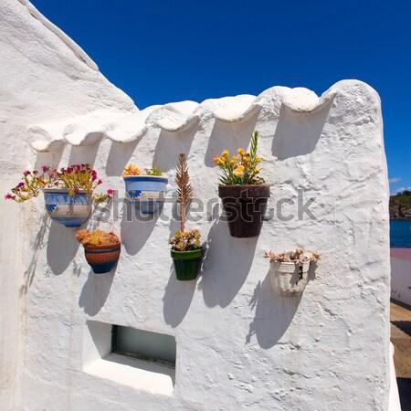 白い家 花 詳細 家 壁 自然 ストックフォト © lunamarina