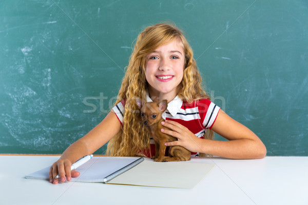 Blond student girl with puppy dog at class board Stock photo © lunamarina