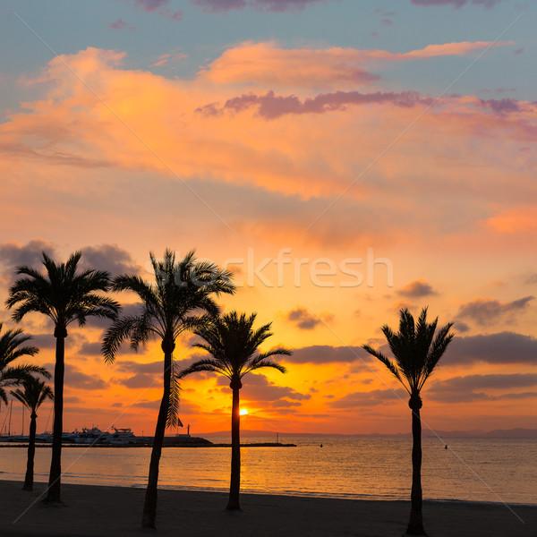 Majorca El Arenal sArenal beach sunset near Palma Stock photo © lunamarina