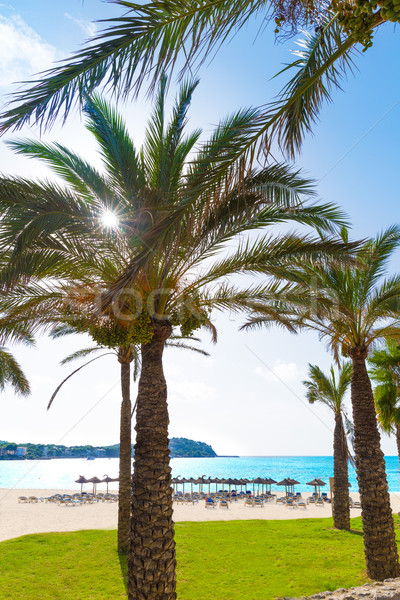 Mallorca Cala Santa Ponsa Ponca beach in Majorca Stock photo © lunamarina