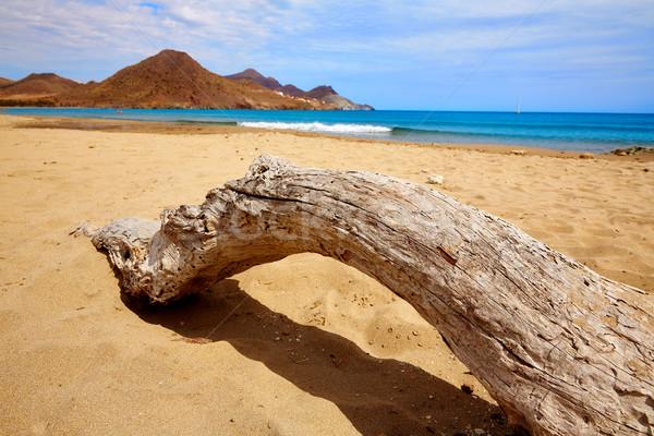 Almeria Playa Genoveses beach Cabo de Gata Stock photo © lunamarina