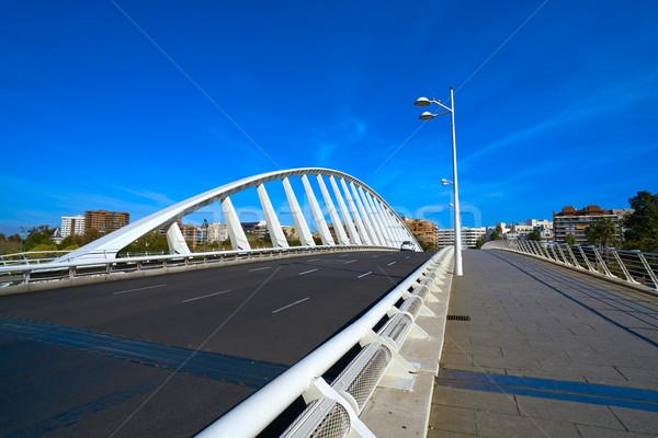 Valencia híd folyó park épület háttér Stock fotó © lunamarina