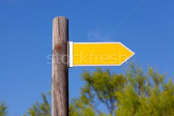 Stock fotó: Citromsárga · copy · space · nyíl · jelzés · fából · készült · pólus · erdő