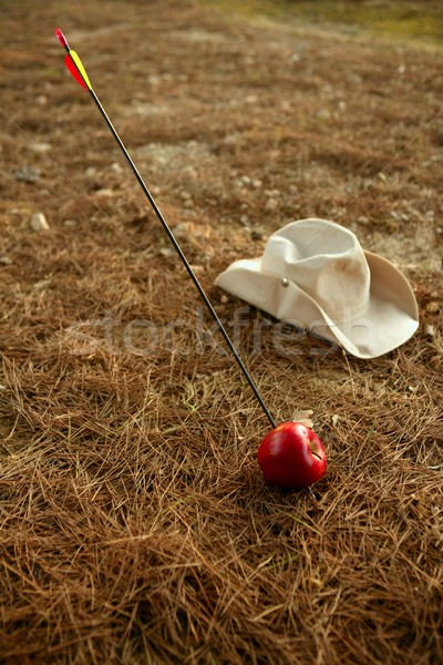 William tell metaphor with red apple and arrow  Stock photo © lunamarina
